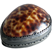 Rare Antique 18TH C GEORGIAN COWRIE Shell & Pewter Snuff Box, London c1780