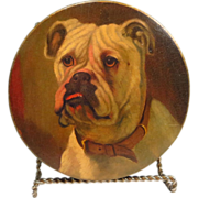 "Antique Bulldog Portrait Papier Mache Box 6.25"" Diameter"