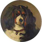 King Charles Spaniel Dog Portrait