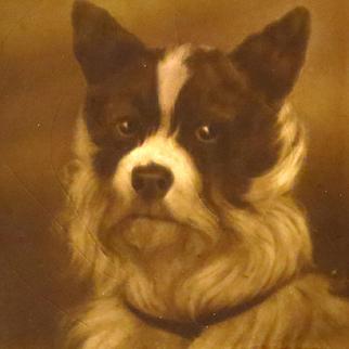 Antique English Dog Portrait Handpainted Tile