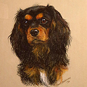 Cavalier King Charles Spaniel Pastel Painting Portrait Mary Browning