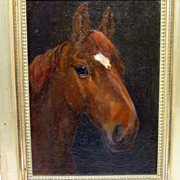 Antique Horse Portrait Oil Painting