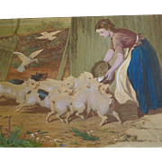 "Vintage Print Young Woman Feeding Pigs Titled ""A Noisy Family"""