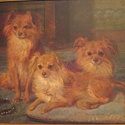 Large Belgian Oil 3 Pomeranian Dogs Signed F. Gaudfroy 1919