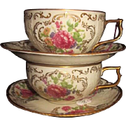 Vintage Rosenthal Sanssouci Tea Cup and Saucer  GERMANY-buy how many you need 1, 2 or 6