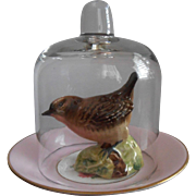 Beswick Bird Under Glass Dome