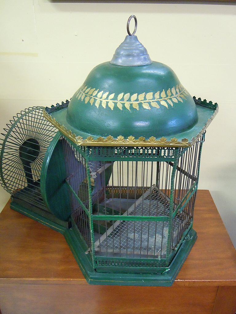 Rare Vintage Squirrel Cage From Legendsantiquesclocks On