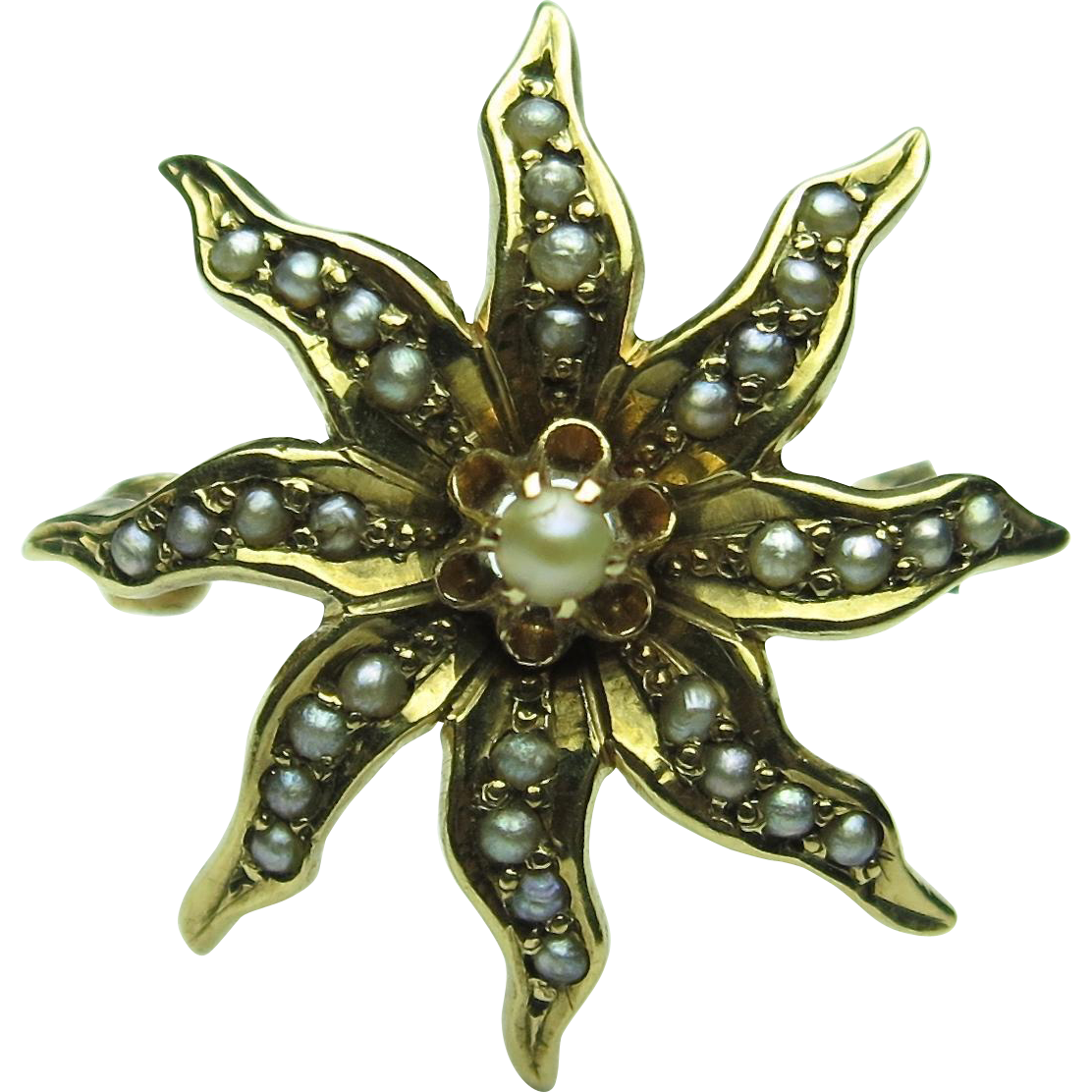 Antique Victorian 10K Seed Pearl Starburst/Sunburst Brooch