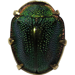 Antique Victorian 10K Gold Egyptian Scarab Beetle Stick Pin