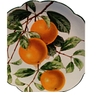 Nicely hand painted oranges late 1800s Dresden porcelain plate