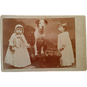 Beautiful large dog with 2 mystified doll like children cabinet card photograph