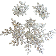 Clear Austrian Crystal Rhinestone Massive Floral Spray Brooch and Earring Set