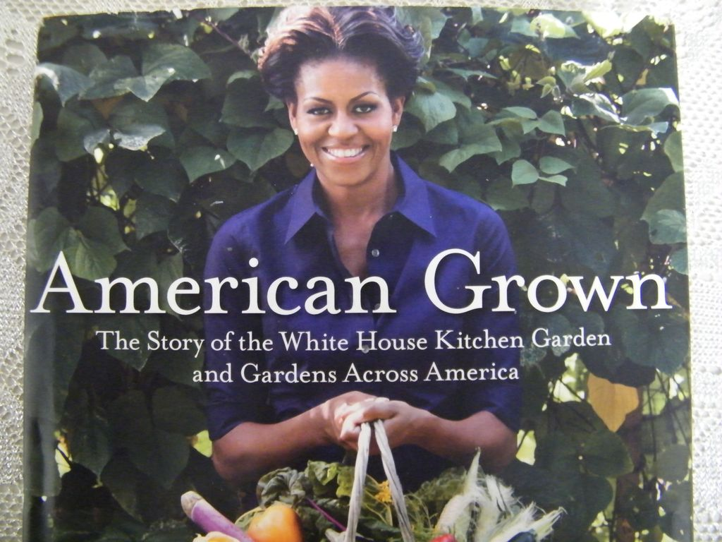 Item ID: BOOK AMERICAN GROWN M OBAMA In Shop Backroom