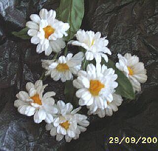 Vintage   Daisy    Bouquet