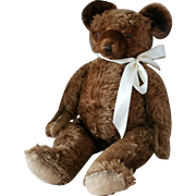 Early 20th Century Bear...