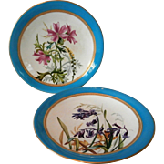 19th Century Royal Worcester Plates....