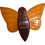Vintage BAKELITE Figural Cream Corn Butterfly Wood Center Pin Brooch