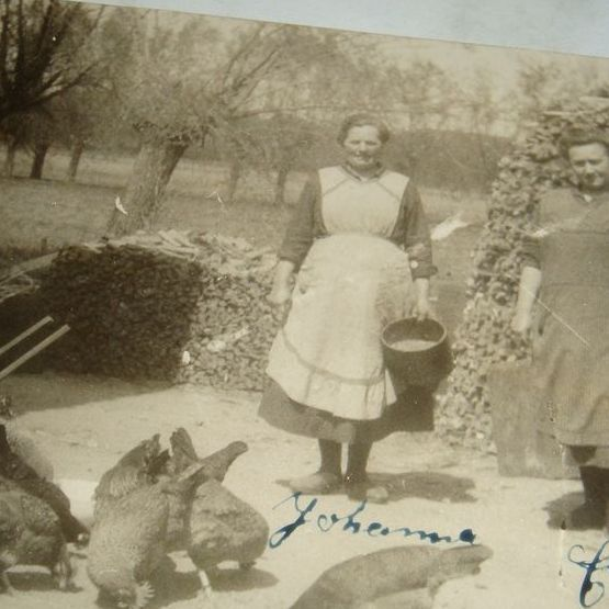 Early 1900's Real Photo Postcard Two Stout Women Feeding the Chickens