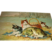1911 Embossed Cats Postcard With Basket Crossville, Illinois