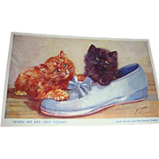 Vintage English Signed Cat Postcard Playful Black Persian and Short-Haired Kittens in Shoe