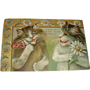 Raphael Tuck Early Flirting Cats Postcard from Humorous Cats Series