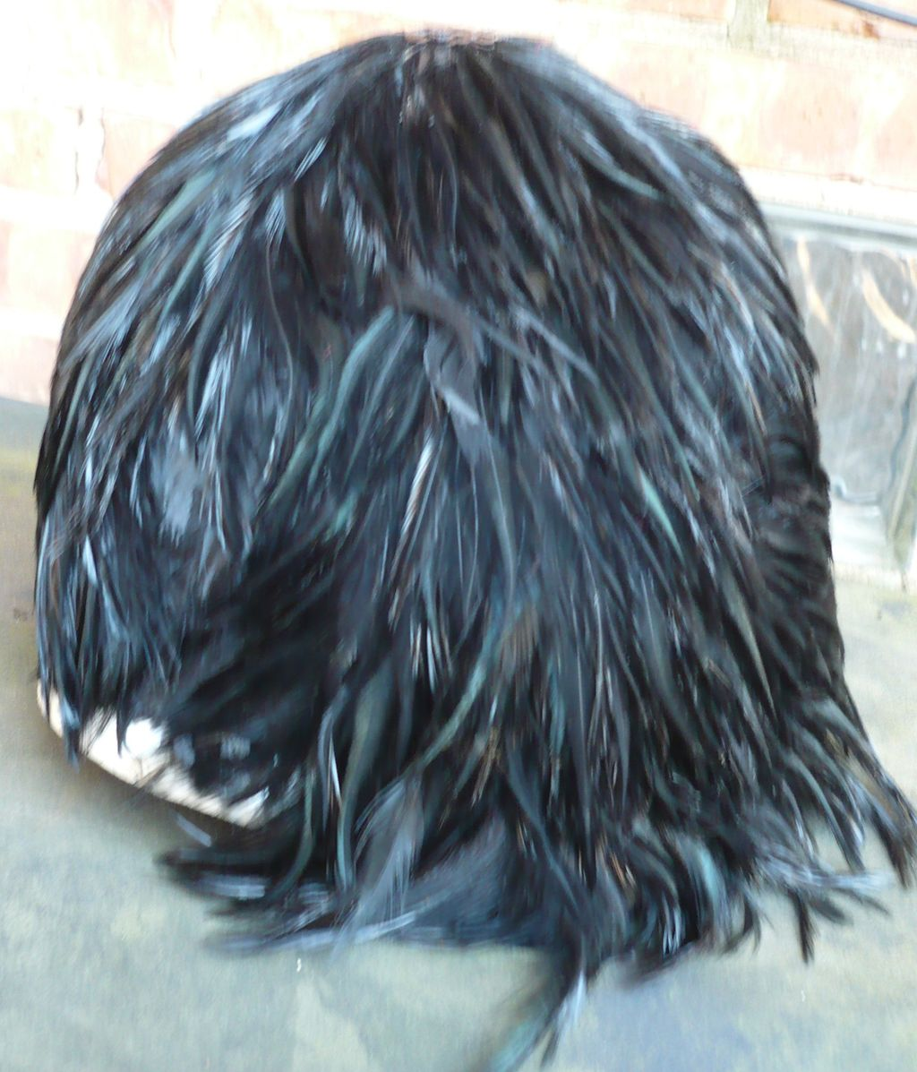 Vintage Black Feather Hat