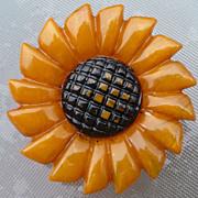 Bakelite Sunflower Pin