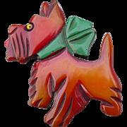 Bakelite Dog Pin