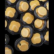 Bakelite Buttons Black & Cream 10