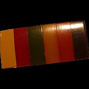 Multicolor Bakelite Button