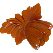 Butterscotch Bakelite Flower Clip
