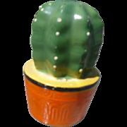 Ceramic Cactus Shaker