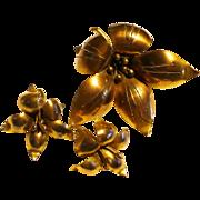 Brass Flower Pin & Earrings