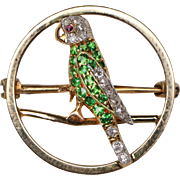 Demantoid, Diamond and Ruby Parrot Pin, 1890-1910.