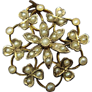 Dreamy Victorian Seed Pearl Brooch or Pendant