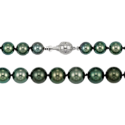 Fine Cultured Tahitian Pearls - Diamond Set Gold Clasp