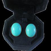 Persian Turquoise Earrings, 14K Yellow Gold
