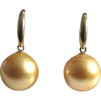 Golden South Sea Pearl Earrings, 14K