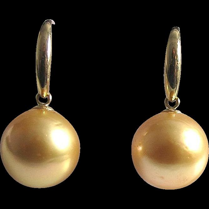 Golden South Sea Pearl Earrings, 14K
