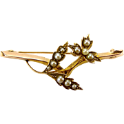 Victorian 9ct Gold & Seed Pearl FLOWER Brooch/Pin
