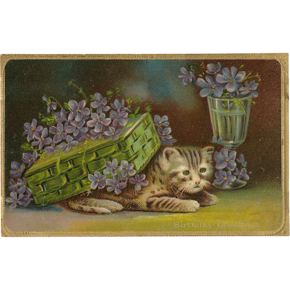 Embossed Cat or Kitten Postcard with Flowers - Birthday Greetings