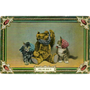 Glossy Postcard of Teddy Bear with Kittens - Early 1900's - Red Tag Sale Item