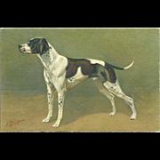 Pointer Dog Vintage Postcard Signed by Artist J. Rivst. - Red Tag Sale Item