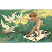 Undivided 1908 Embossed Postcard of Cherub or Cupid and Doves - Love's Message