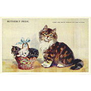 Artist Signed Mabel Gear Vintage Postcard of Mother Cat with Basket of Kittens