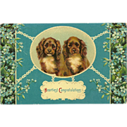 Embossed Glossy Congratulations Postcard with Two Spaniel Dogs