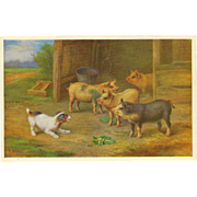 Artist Signed Vintage Postcard of Puppy and Pigs