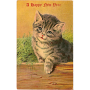 Vintage New Year Kitten Postcard 1909