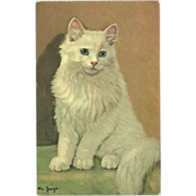 Vintage Artist Signed Postcard of White Cat by Mainzer