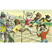 Alfred Mainzer Dressed Dogs Postcard - Race to Finish Line
